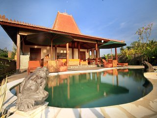 Villa D'Carik 3: villa in the rice fields of Sayan