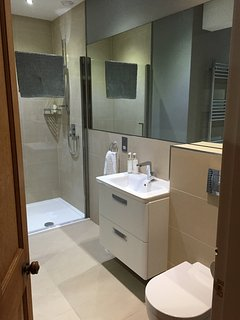 Downstairs family bathroom with walk in shower, bath, WC and sink.