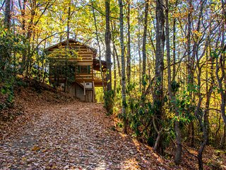 'Little Bear Hideaway' 1BR Gatlinburg Cabin!