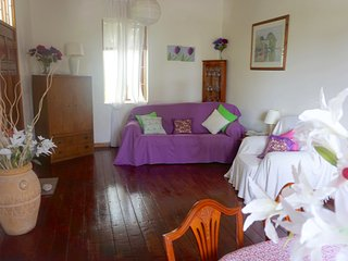 Sea Grape Room.  Charming Home, Great Location, Private Bath, Safe, Secur, Wifi, Hastings