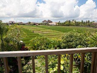 Dream Villa for Family / Friends in Umalas