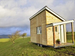 Blueberry Shepherds Huts (The Welsh Den)