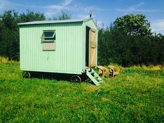 Blueberry Shepherds Huts (The Original Blueberry Hut), Maidwell