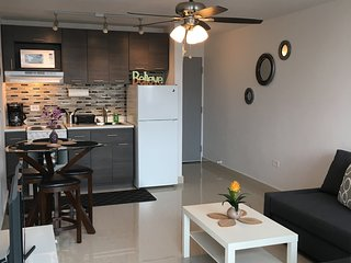 Totally New One Bedroom Cozy PH with Parking, San Juan