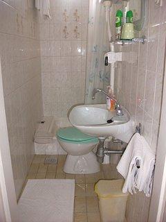 A1(8+1): bathroom with toilet