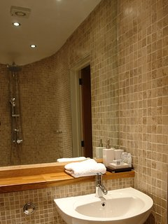 Downstairs wetroom with loo and handbasin