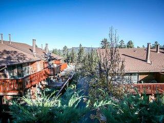 Skier's Delight Condo~Central Heat~Full Kitchen~Cozy Living Room~Decks~, Big Bear Region