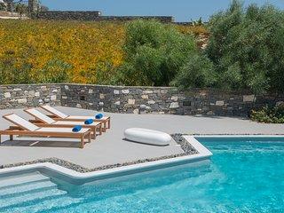 Aelia Grand Villa with Sea View and Private Pool