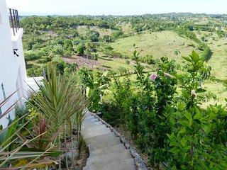 L'accès se fait par un escalier sinuant bordé de multiples espèces tropicales.