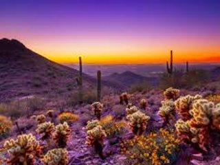 belo pôr do sol do deserto
