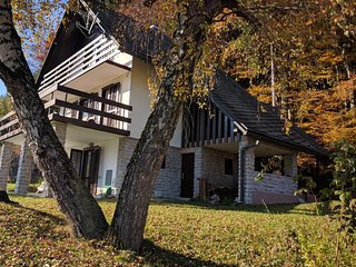 Nice private house is located 100 m from the ski lift Stari Vrh in Skofje Loka, Skofja Loka