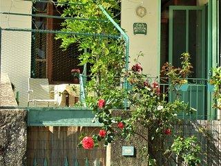 Authentic Provençal village house with terrace, Bourdeaux
