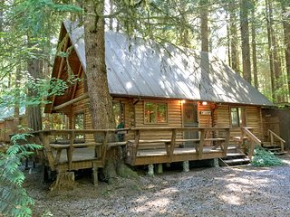 Mt. Baker Rim Cabin #43 - A Country Family Log Home!