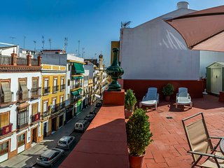 PENTHOUSE TRIANA 2 BEDROOMS WITH TERRACE, Seville