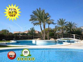 556291- Oasis Pool, Alicante