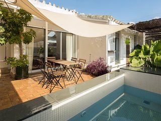 Santa Marina Terrace. 4 bedrooms, private terrace with plunge pool, parking, Sevilha