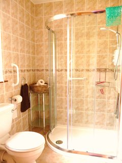 Bathroom with large shower unit, equipped for less able guests.