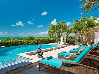 15% discount March 11 to 18, Privacy, Infinity Pool, Spa, Swim Dock, Gazebo, Providenciales