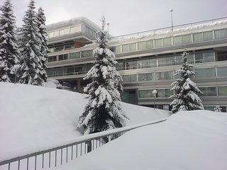 Vacanze sulla neve in Val di Sole, Mezzana