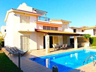 5 Minute to Sandy Beach - Luxury Spacious Villa - Massive 12m x 4m Swimming Pool, Chlorakas