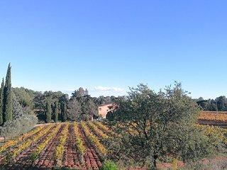 belle villa climatisée 140m2, 3 chambres, 2 SDB, piscine, au milieu des vignes