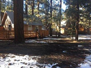 Beary Cute Cabins, Big Bear City