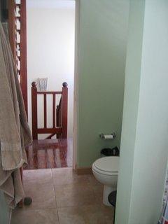 Full bathroom throne