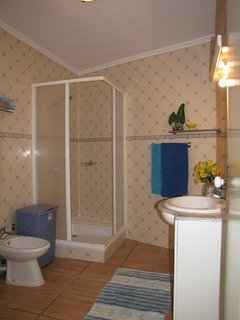 Full bathroom with shower, towels and hair dryer.