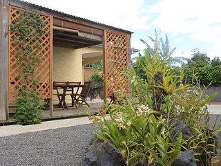 La terrasse et le coin repas (photo n°1)