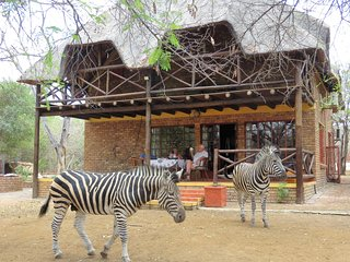 Rafiki's Resthouse  : Private safari on your doorstep, bush yet free Wifi