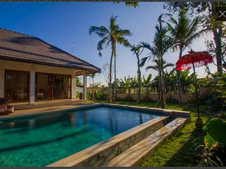 Beautiful 3Br CLOSE Canggu Beach