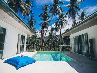 Jungle Villa with private swimming pool