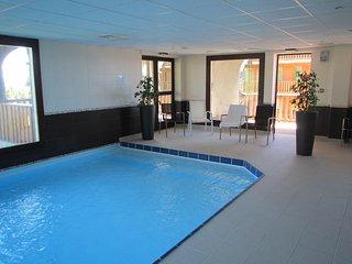 Station supbesse superbe T3 41m2 6p + terrasse 15m2 SUD+ piscine/sauna gratuit, Besse-et-Saint-Anastaise