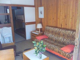 ISOLA2000 loue beau studio meublé  4 p avec terrasse,très belle vue,ensoleillé, Isola 2000