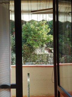 Vista sul giardino privato dalla camera doppia