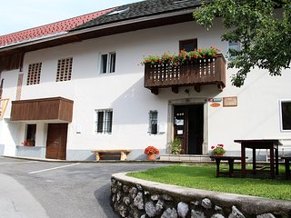 Lake Bohinj 6 bedroom apartment 10-15 pers., Bohinjsko Jezero