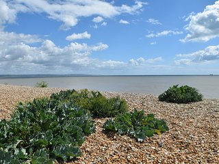 Beautifully appointed studio apartment with superb sea views., Littlestone