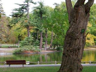 Bordeaux Parque