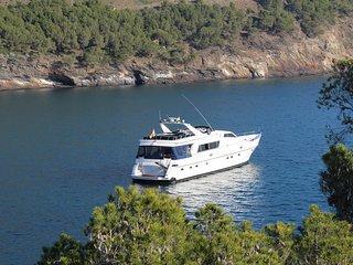 golden dream yacht