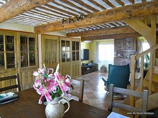 JDV Holidays - Mas St Dora, Provence
