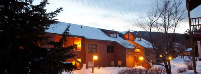 Ski right home! Updated 1br condo, fireplace, pool, hot tub, fitness center.
