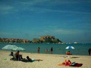 Corse Calvi beau F2 4 pers calme lumineux terrasse ,en ville à 60m de la plage