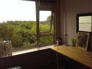 Room with skyline of Amsterdam, Ámsterdam