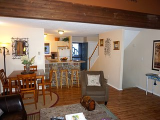 Newly Remodeled 4 Levels on Camelback - Walk to slopes, Tannersville