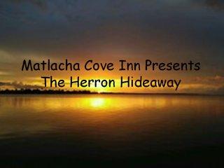 The Heron Hideaway