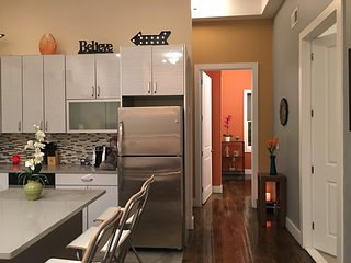 AMAZING LUXURY LOFT --- NEAR TRAIN (2 BEDROOM)