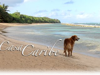 Casa de Caribe-only 5 min drive to North side secluded beaches., Vieques