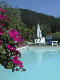 Lovely villa with panoramic pool & gardens between Lucca  & Pisa