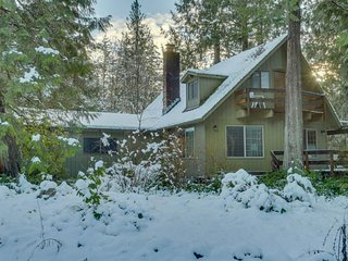 Cozy, rustic home w/ river access, entertainment, & skiing nearby!, Rhododendron