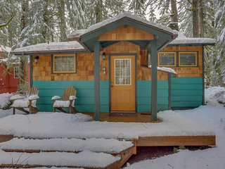 Modern, cozy, dog-friendly mountain retreat w/private hot tub & central location